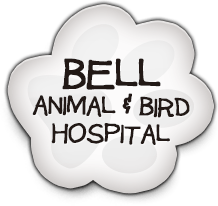 Bell Animal and Bird Hospital