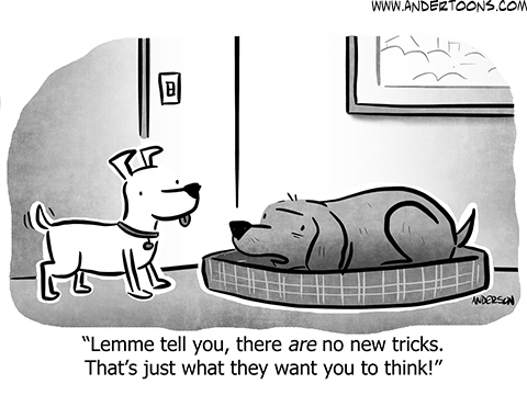 Pet Cartoons